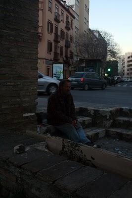 Sevilla: fauna urbana I