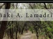 Reseña: Odas poemas Dragones Princesas Iñaki Alonso Lamadrid
