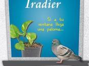 Entrevista josé andrés álvaro ocáriz, autor libro sebastian iradier, ventana llega paloma…