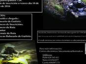 ruta brocamontes guitiriz 26/11/2016