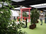 Exposiciones bonsáis, kimonos, samuráis, cerámica pintura tradicional japonesa XXII Salón Manga Barcelona