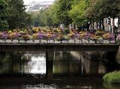 Quimper, ciudad medieval invadida flores multicolor