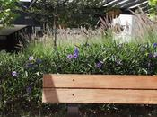 Haus Tour: jardín bonito moderno