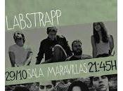Labs Trapp Wold Maravillas Club