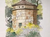 Ruta Camelia: jardín Saleta otoño, octubre 2016. Camellia Route: Saleta's Garden autumn, October, 1-31,