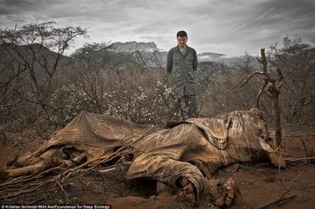 matanza-de-animales-blog-el-barrio-verde-tenerife