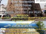 Carrera Urbana Torreón Cala