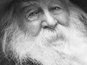 Walt Whitman durmientes