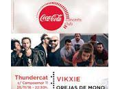 Vikxie Orejas mono Thundercat Club
