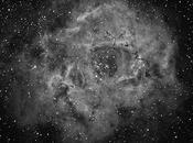 Nebulosa roseta (ngc 2237)