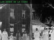 [Apuesta Telúrica] Cementerios Genes Vida