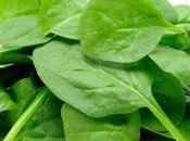 Alimentos vegetales cuidarán buen estado cerebro