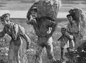 revulsivo contra esclavitud