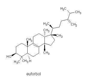 euforbol