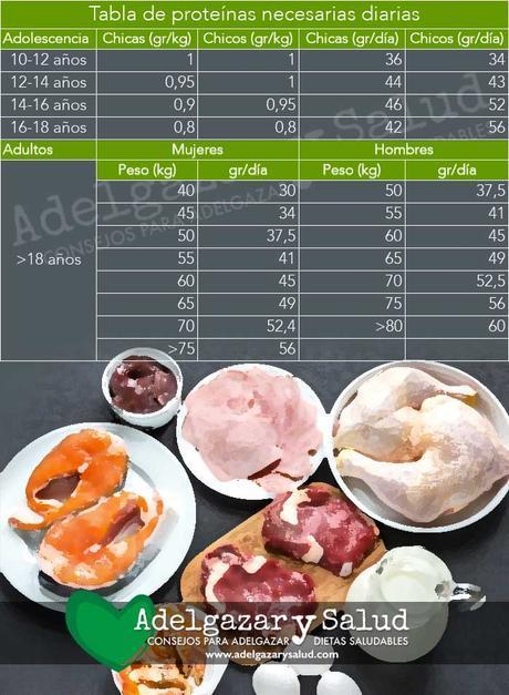 proteinas necesarias para adelgazar