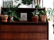 piensa verde: plantas inspiradoras