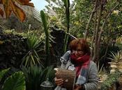 Arreglando jardín sueños... Arranging garden dreams