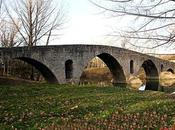 Puente Magdalena