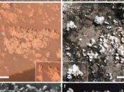 Detectan formaciones Marte similares estructuras generadas biológicamente Tierra