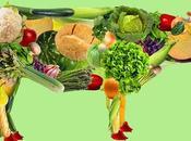 Inconvenientes vegetariano cómo superarlos