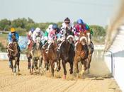 Comienzan Carreras Caballos Diciembre Gran Hipódromo Andalucía