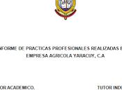 Modelo Informe pasantias. UNEFA.