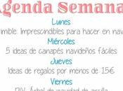 Agenda Semanal 12/12 18/12