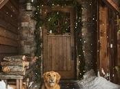 Refugio Navidad