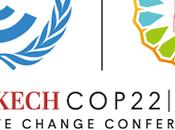 ¿Qué podemos esperar Cumbre Clima Marrakech?