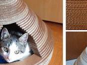 Cómo hacer casita para gato fácil económico