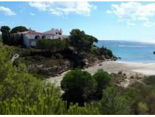 Playas para perros Costa Azahar Valencia