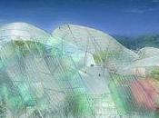 paraliza obra Frank Gehry París