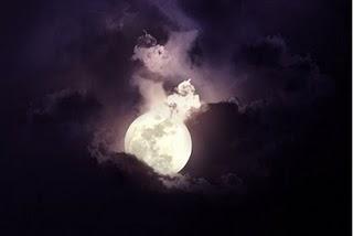 Lo último que leí.......Luna Comanche