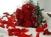 rosas regalo especial)