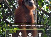 Aplicación para descubrir alimentos contienen aceite palma.