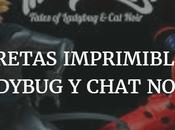 Caretas imprimibles Ladybug Chat Noir Printable Masks