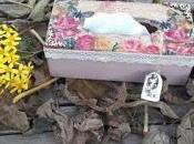 caja pañuelos, puerta ratoncito