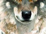 Encuentros lobos. Algo libro sobre lobos