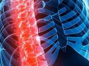 Enfermedades trastornos musculoesqueléticos