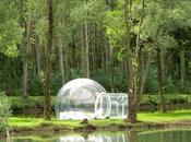 mejor tienda campaña (carpas) para disfrutar naturaleza!