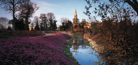 Que ver en gij n te damos 10 razones para visitar esta for Jardin botanico en sevilla