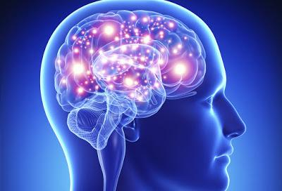 Como el cerebro determina que es lo importante
