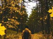 Caminar diario cambiará vida para siempre