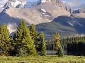 Canadá: (Día Parque Nacional Jasper