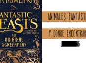 Animales fantásticos dónde encontrarlos: guión