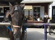 Viaje pasado tierras amish, Pennsylvania