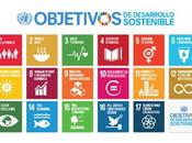 Marketing sustentable, tendencias desafíos Naciones Unidas