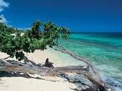 Priorizan Manatí protección duna costera