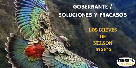 GOBERNANTE - SOLUCIONES Y FRACASOS