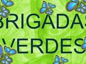 Reunión Brigadas Verdes 20/2/2017